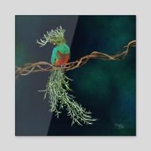 Resplendent Quetzal + Fish Hook Senecio - Acrylic by Meghan Keeley