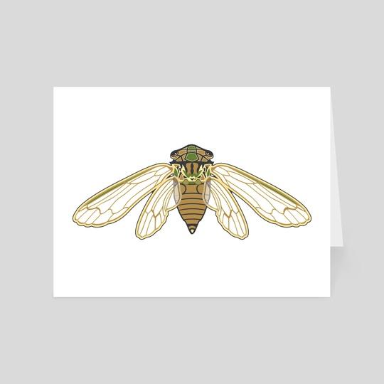 Cicada by Isabel Hundley