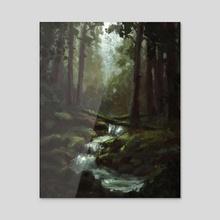 Dark Forest Stream - Acrylic by Ed  Pulella
