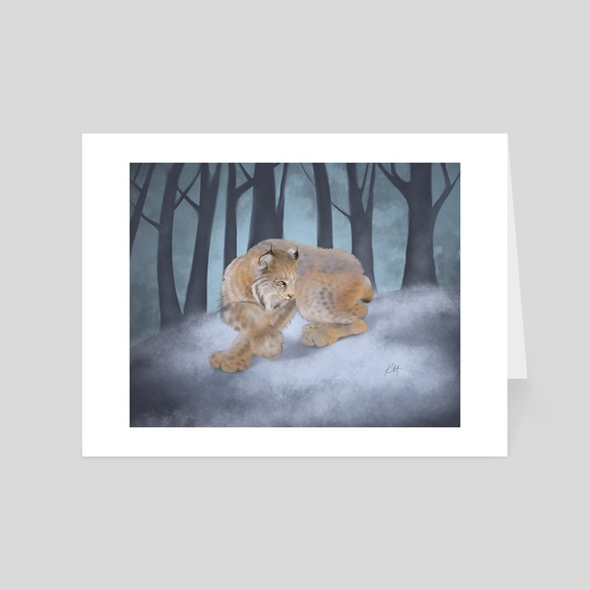 Canadian Lynx by Katherine Hahn