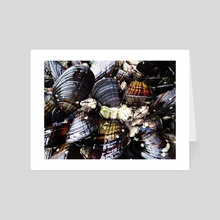 Mussels in the Tide - Art Card by Melissa Kelley