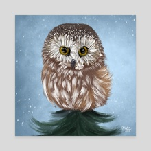 Northern Saw-whet Owl + Daisy - Canvas by Meghan Keeley