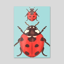 Insectober 2020 day 11 - Acrylic by Louise Oppitz