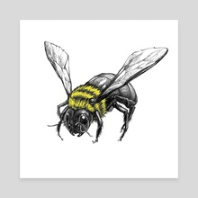 Realistic bee - Canvas by Asha Siyaivo