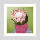 Galah Cockatoo + King Protea - Art Print by Meghan Keeley