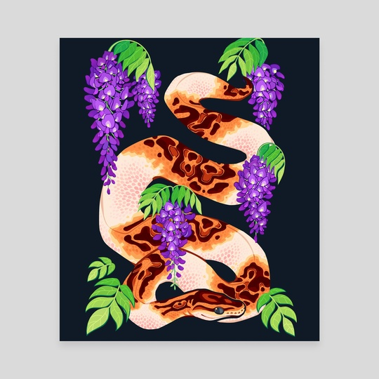 Wisteria ball python by Mariana Guati