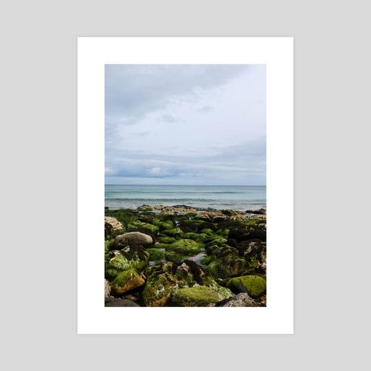 Green Rocks by Amanda Carey