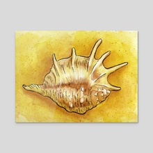 Seashell on sand - Acrylic by Carl Conway