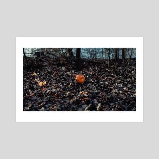 Pumpkin in the park in New York City (2019-12-GNY-38) by Vlad Meytin