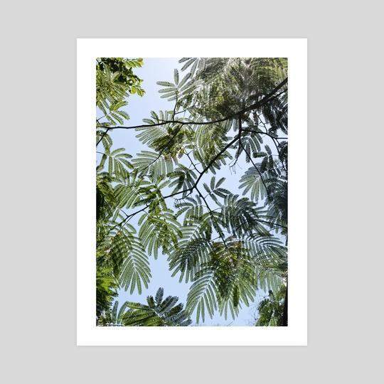Greenways 20-02 by Kaden Peregrine