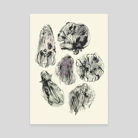 Weird mushrooms by Batorchids
