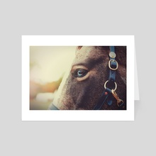 Equus - Art Card by Nicole Peterson