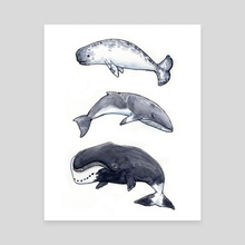 Whale Trio 1 - Canvas by Angela Cosenzo