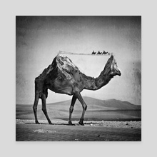 Camel & Mountain - Canvas by Sarah DeRemer