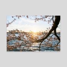 Sun Over the Horizon - Canvas by Alex Tonetti