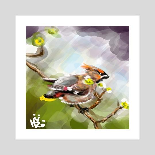 Birdy by HYZO