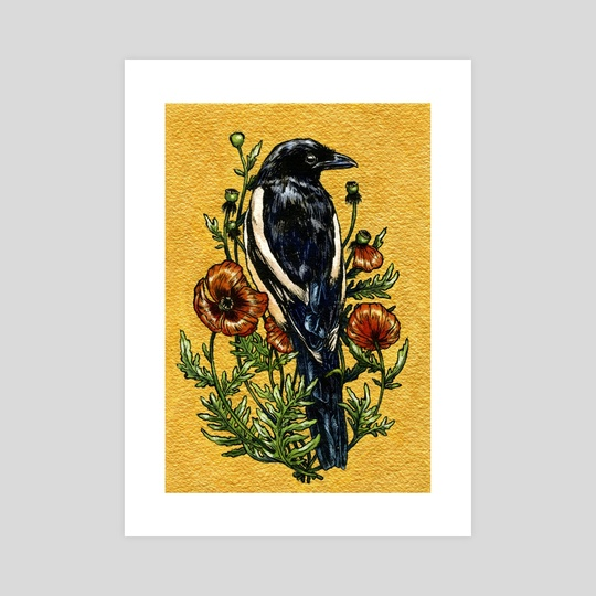 Magpie & Poppies by Emily Poole