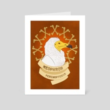 Egyptian Vulture - Art Card by Erin Conley