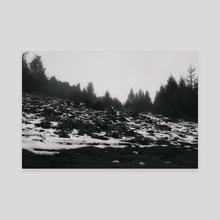 Winter Wonderland - Canvas by Diogo Pereira