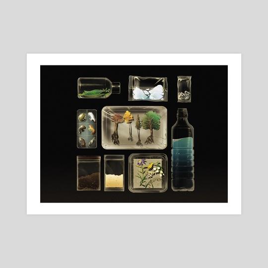 In Plastic by Hayley Hanyuda Wong