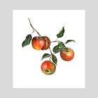 apple branch - Art Print by Mel Light