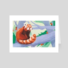 Red Panda - Art Card by Carson McNamara