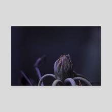 Alien Buddy - Canvas by Eye Spy Nature