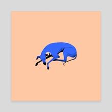 Greyhound pose 3 - Canvas by Joanna Dudoń
