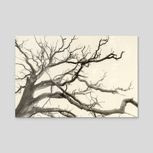Narco Tree - Canvas by John Williams