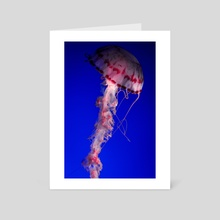 Jellyfish - Art Card by Mark Mis