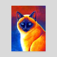 Jewel of the Orient - Colorful Siamese Cat - Canvas by Rebecca Wang