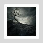 Lonely Tree - Art Print by Tóth Zoltán