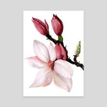 Magnolia II - Canvas by Paulina Navarro