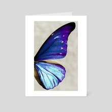 morpho 03 - Art Card by noir blanc777