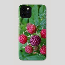 Red Berries - Phone Case by Ashley Gedz