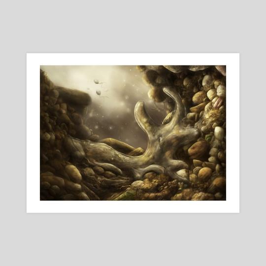 Amoeba in soil by Katelyn Solbakk