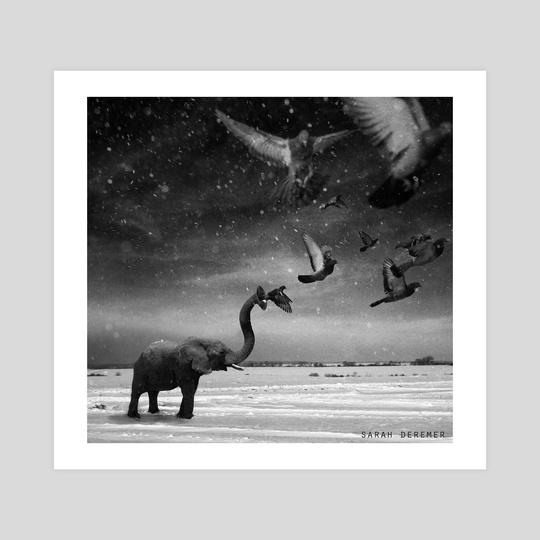 Elephant & Pigeons by Sarah DeRemer