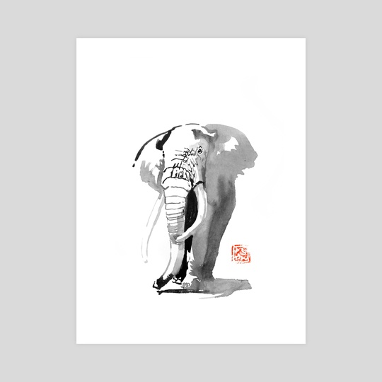 elephant 02 by philippe imbert