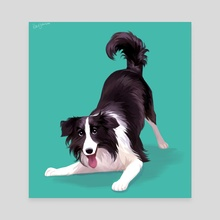 Border Collie - Canvas by Beverly Johnson