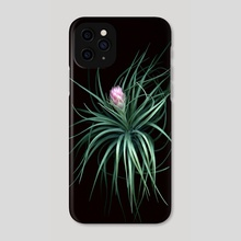 Tillandsia 02 - Phone Case by Black Botanicals