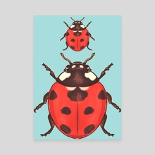 Insectober 2020 day 11 - Canvas by Louise Oppitz