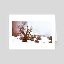 Tree at Double Arch - Art Card by Mason MacKenzie