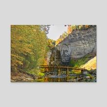 Taughannock Falls - Acrylic by Savanna Lim