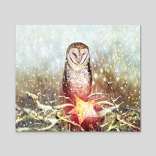 Owl & Star - Acrylic by Pure  Art