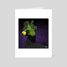 Great Curassow + Albuca Spiralis - Art Card by Meghan Keeley