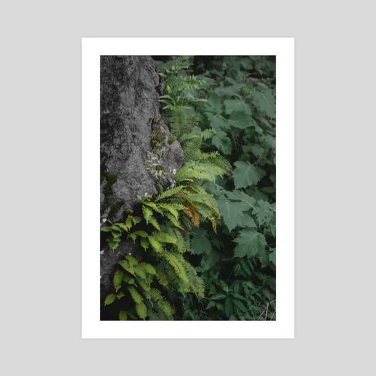 Corners by Alan Mariscal
