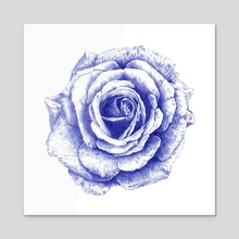 Ballpoint Blue Rose - Acrylic by Ronn Kools