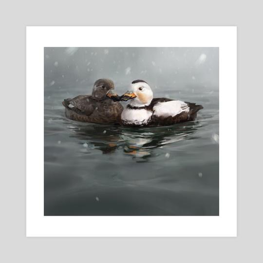Labrador Duck Pair by Andrew Sonea