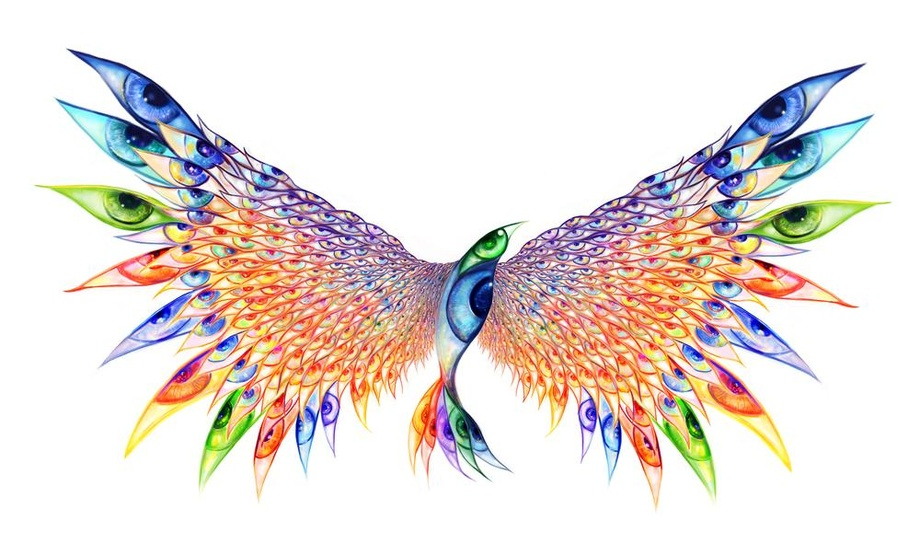 Image result for psychedelic birds