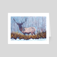 Elk Snow - Art Card by Mark Green